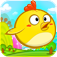 Run Run Chicken app icon